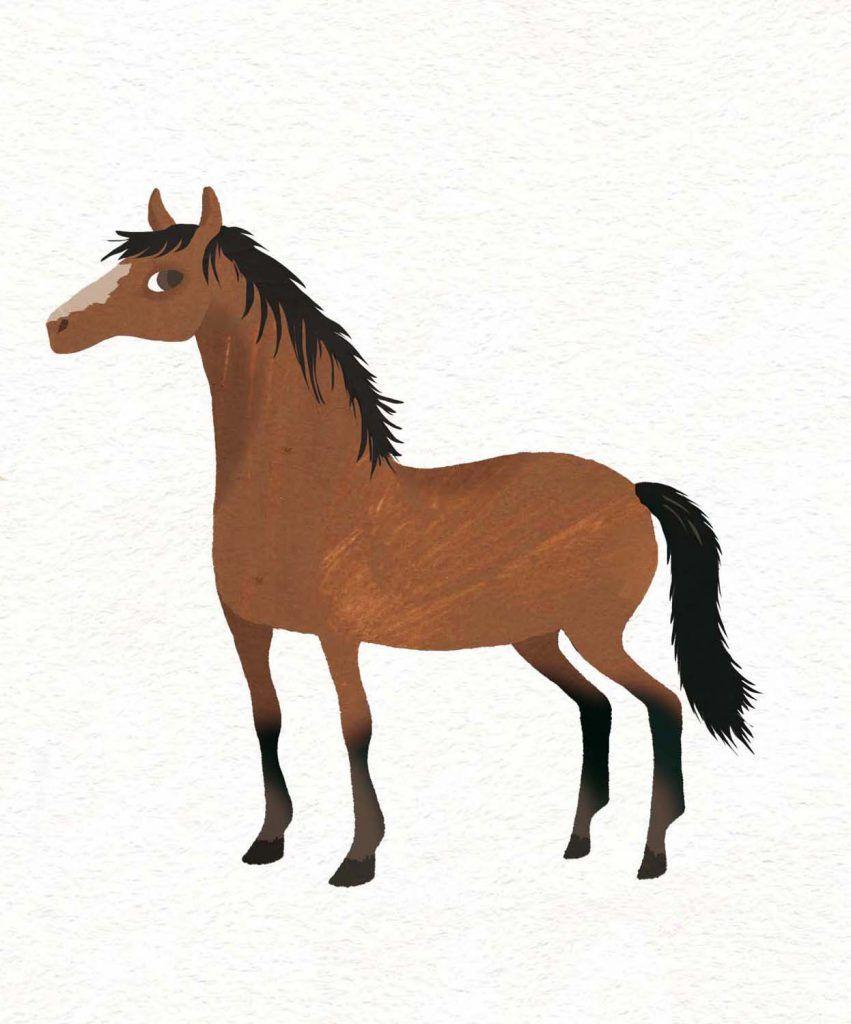 Djeco-Horse