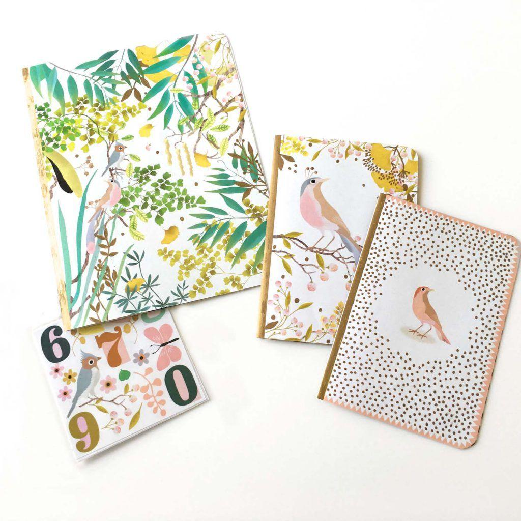 Tinou-Le-Joly-Sénoville-Djeco-notebooks