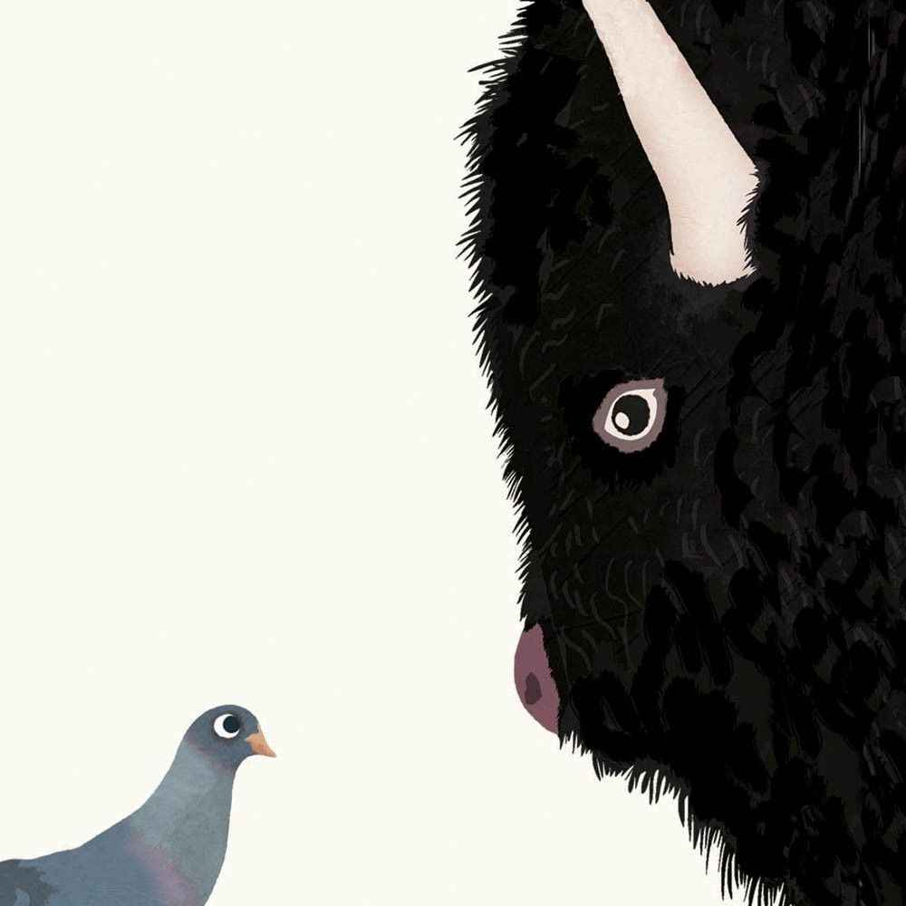 Tinou-Le-Joly-Sénoville-Illustration-Bird-Buffalo