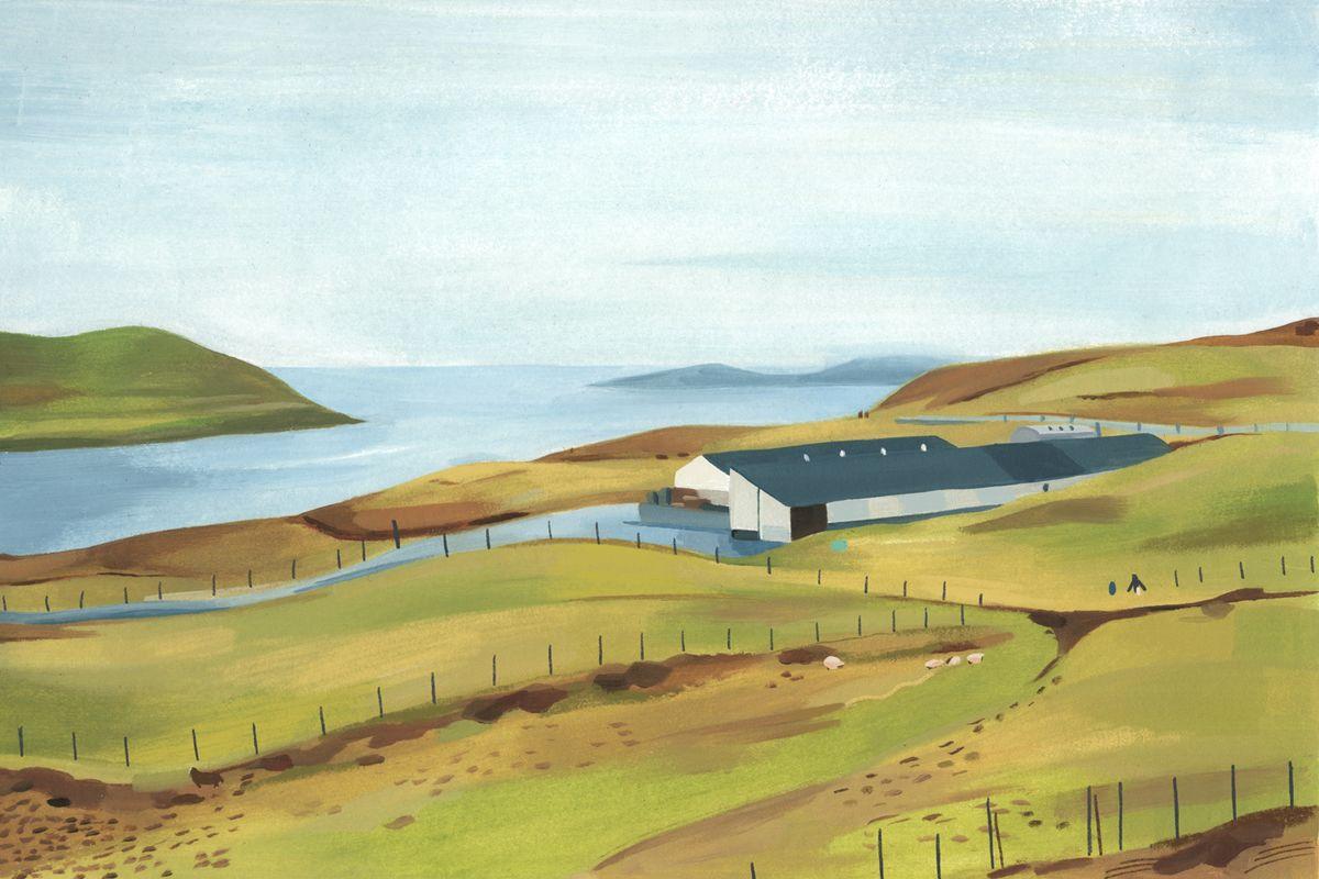 Garance-Grace-helmer-Pellicle-magaine-Faroe