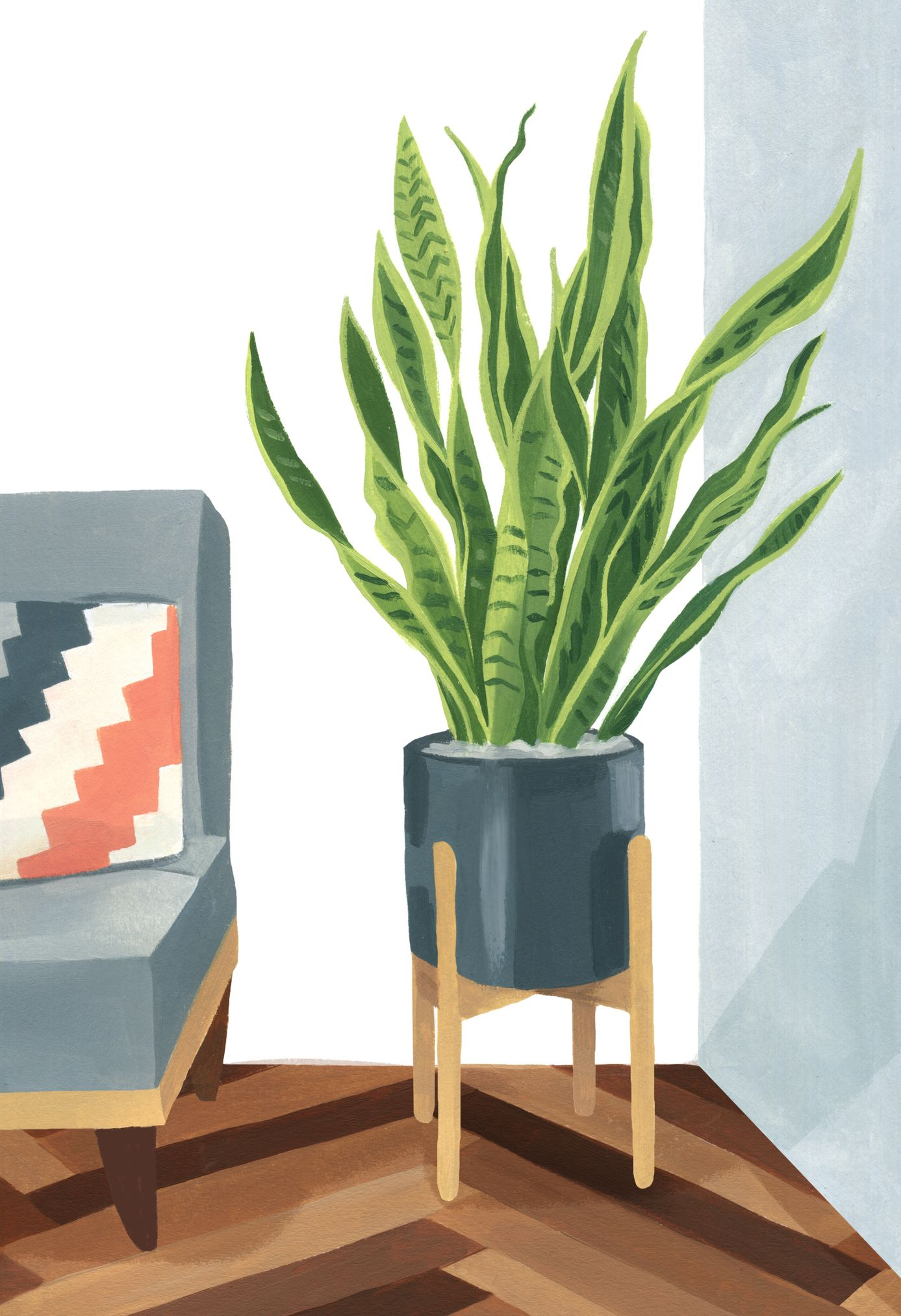 Garance-Illustration-Grace-Helmer-Plantfulness-Snake-Plant