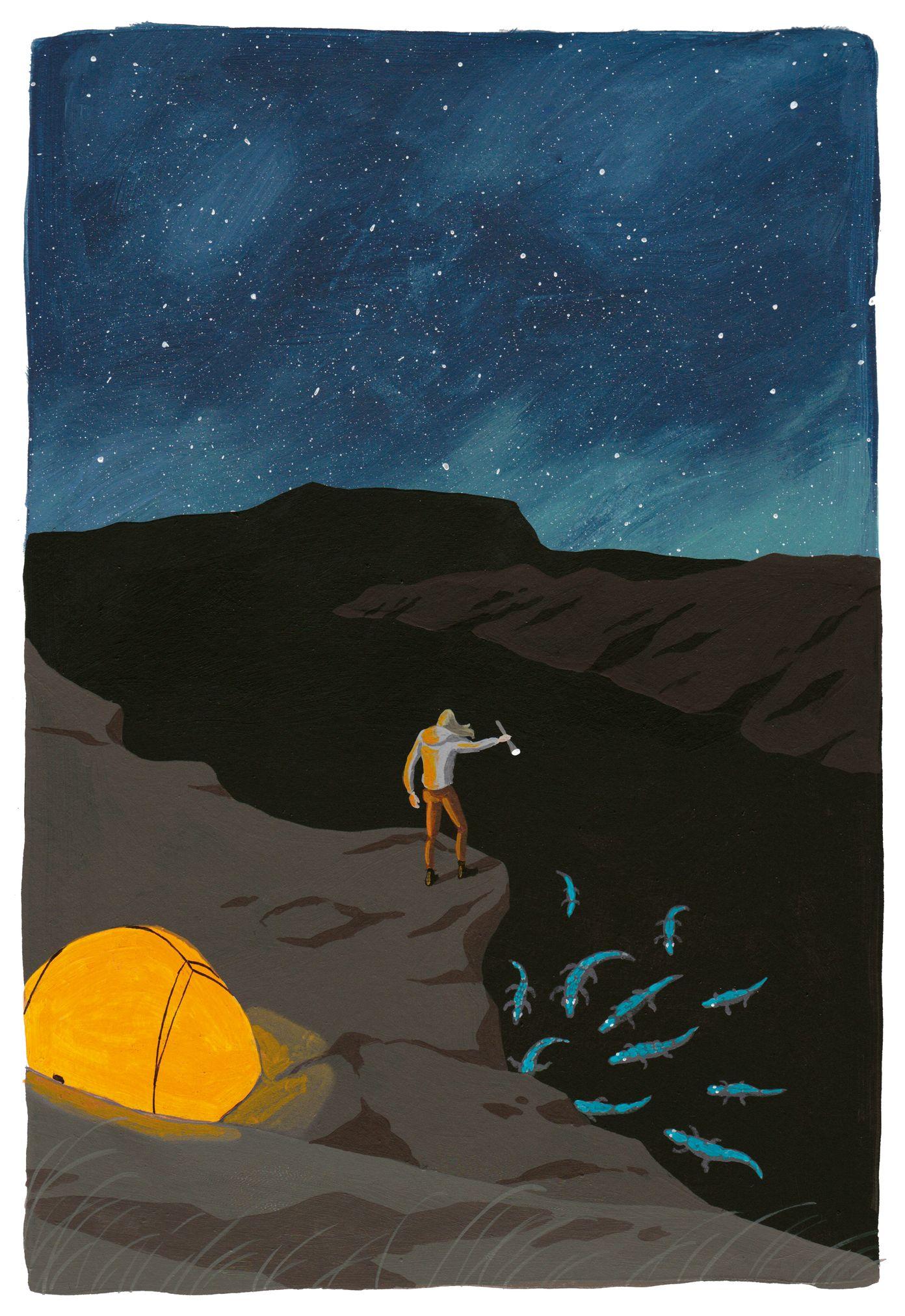 garance-illustration-Yukiko-Noritake-Mint-magazine_web