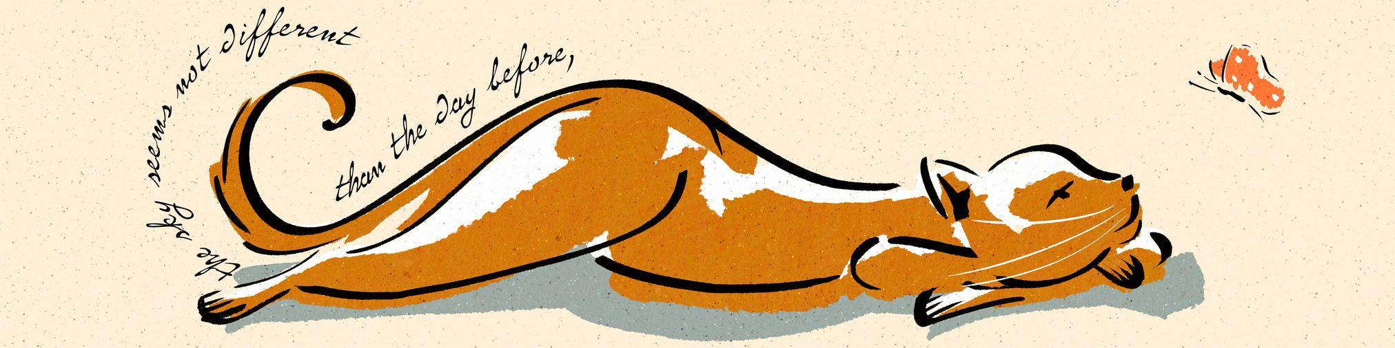 garance-illustration-birgit-schossow-best-wishes-2