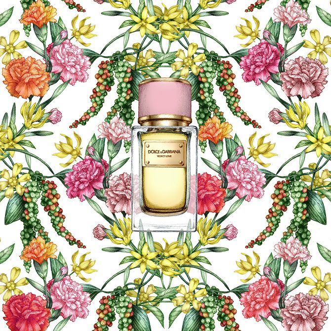 garance-illustration-Frederique-Vernillet-Dolce-Gabbana_web