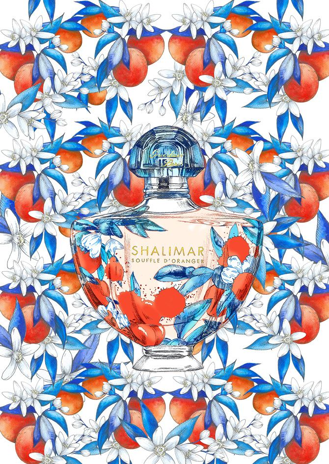 garance-illustration-Frederique-Vernillet-Grazia-Shalimar_web