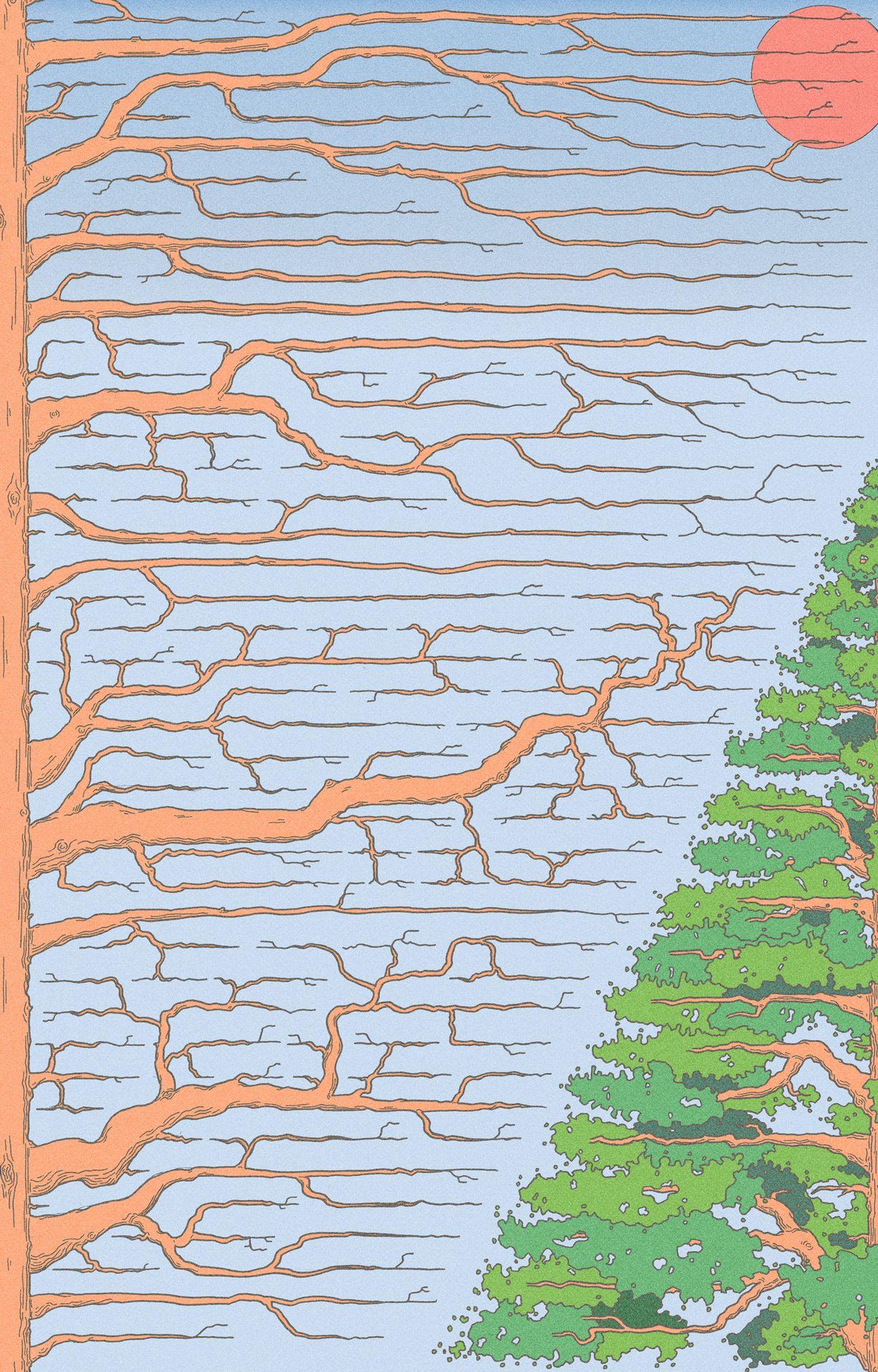 garance-illustration-Kyle-Ellingson-Personal-Work-Tree-vs